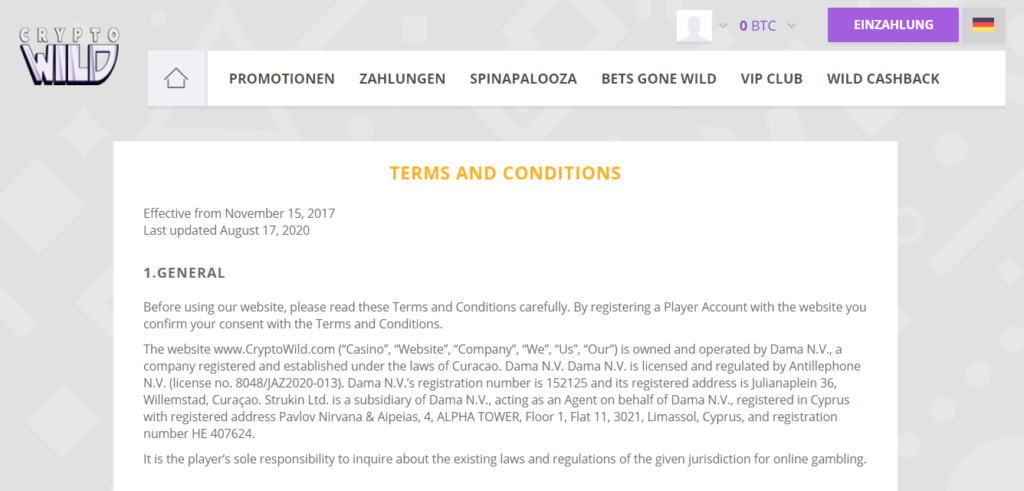Terms and Conditions (DE)